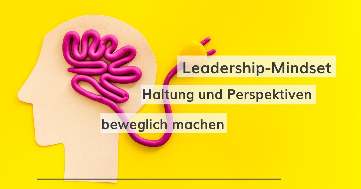 Das Leadership-Mindset: Haltung und Perspektiven beweglich machen